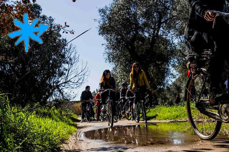 In bicicletta nelle terre del Negramaro