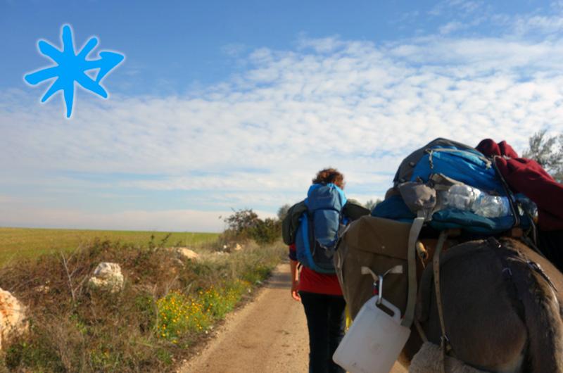 Pellegrinaggio con gli asinelli